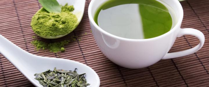 Matcha-Tee: Wundermittel aus China und Japan